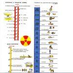 300 килотонн – радиус поражения 12000 км.мощность заряда 300 килотонн.для срвнения хиросима 20 килотонн