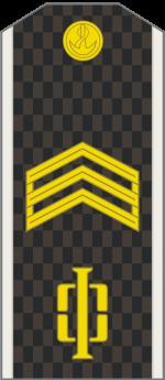 Погоны старшина – Воинские звания в Вооружённых силах Российской Федерации (1994—2010) — Википедия