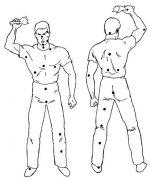 Слабые точки человека на теле – 7. Уязвимые зоны тела